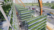 Solar Greenhouse agriculture project for growing Москва